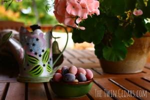 Exterior Home Improvement & a Garden Goodbye