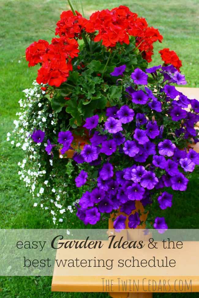 easy Garden Ideas and the best watering schedule