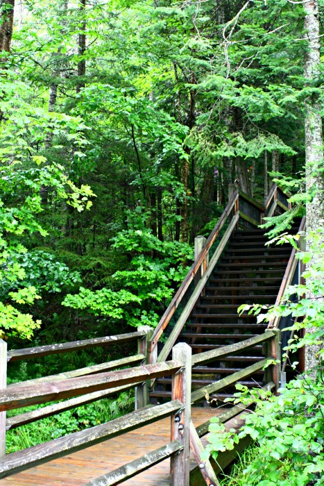 stairs at Tahquamenon Falls